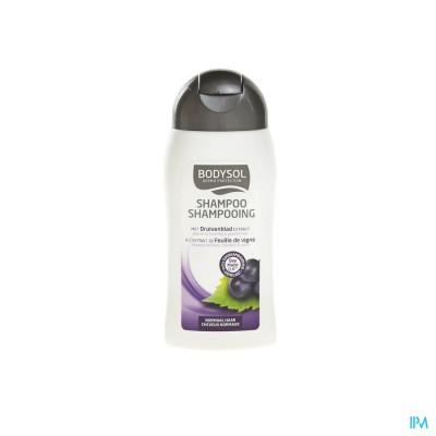Bodysol Shampoo Normaal Haar 200ml New