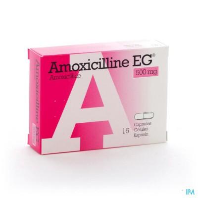 AMOXICILLINE EG CAPS 16 X 500 MG